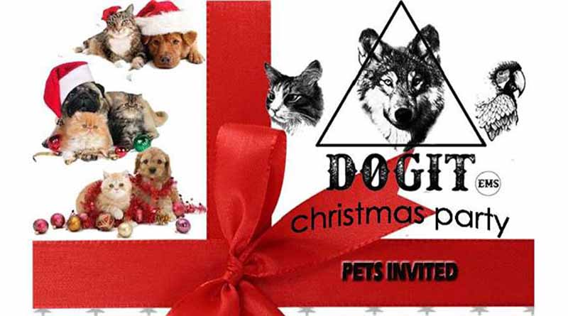 dogit_party_christmas